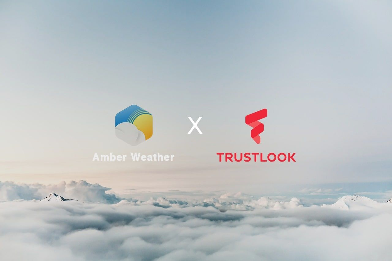 Trustlook Provides Protection Services to Amber Mobile